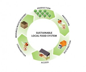CMAP_SustFoodSystemCycle_Fig1_edited